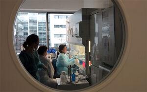 Von den kurzen Wegen zwischen Klinik und Labor profitieren die Wissenschaftler im FZL - von den Ergebnissen ihrer Arbeit letztlich die Patienten. Foto: Jan-Peter Kasper/FSU)