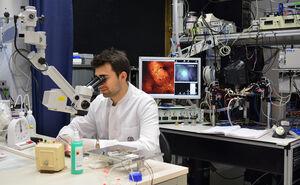 Der neue Masterstudiengang Medical Photonics wendet sich an Natur-, Lebenswissenschafter und Mediziner. Foto: M. Szabo /UKJ