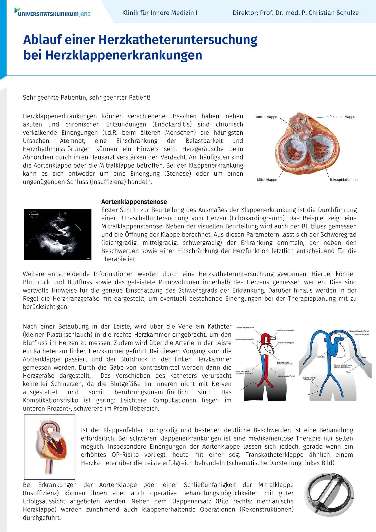 Großartig Der Blutfluss Zu Den Nieren Bilder - Anatomie Ideen ...
