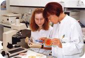 Forschung-klinische Studien